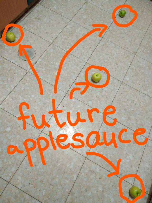 apples on floor.jpg